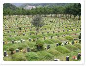 영락공원 사진 1